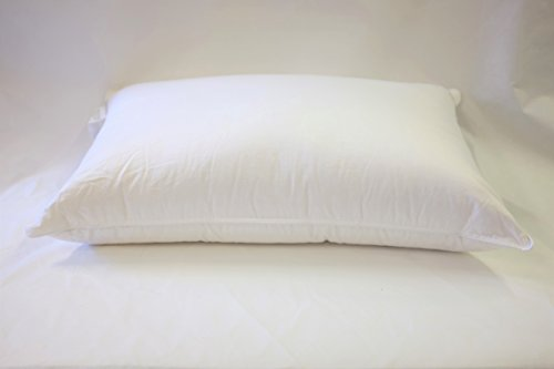 East Coast Bedding European 800 Fill Power White Goose Down Pillow Review