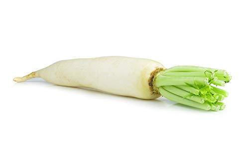 """Rábano""""Carámbano"""" - blanco, bastante picante - semilla"""