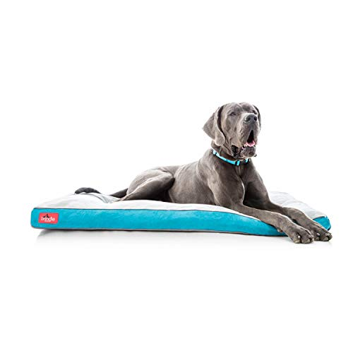 Brindle Soft Memory Foam Dog Bed with Removable Washable Cover - 52in x 34in - Teal