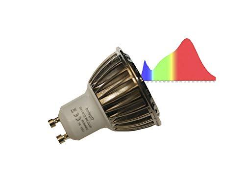 Ogeled CRI 95 GU5.3/Gu10 Spot LED Lampe Strahler 3W neue Vollspectrum Technik Pflanzenlampen Dimmbar A++ (Neutrahlweiss 4000K, 5x Gu10)