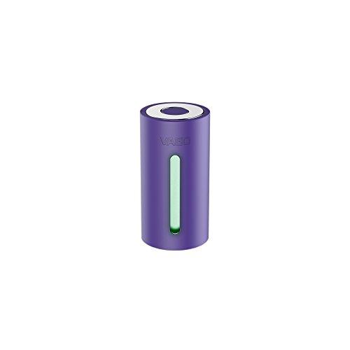 DGL VAGO Organizador para Maletas, 7 cm, Morado (Violett)