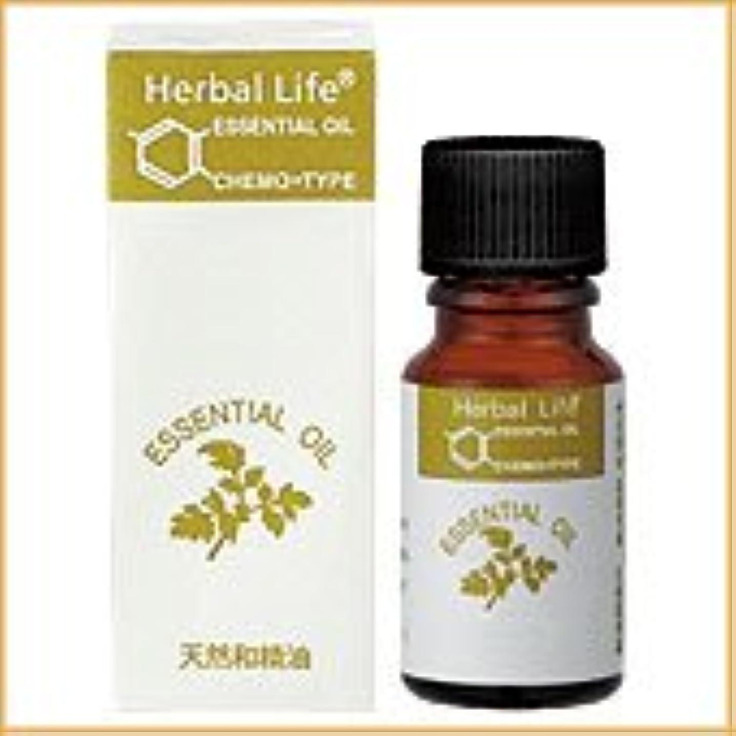 臭いカジュアル肌生活の木 アロマオイル ヒバ 10ml (Tree of Life Essential Oil/エッセンシャルオイル)