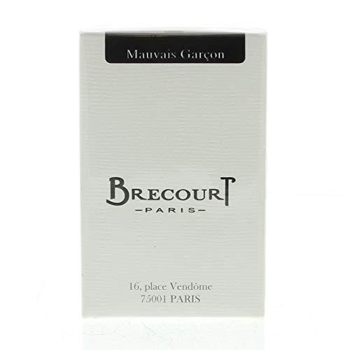 Brecourt Mauvais GARCON Homme/Men, Eau de Parfum, vaporisateur/Spray, 50ML, 1er Pack (1X 260G)