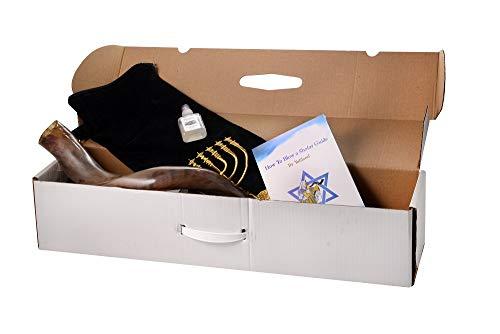 SHOFAR Set FULL Polished 28'-30' Kudu Horn Yemenite + Bag + Odor free + Guide + Carrying Box Case