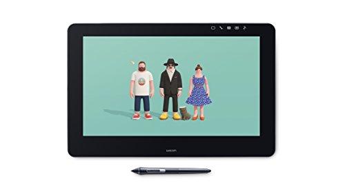 Wacom Cintiq Pro 16  Display Interattivo per Grafica Professionale, per Disegno Digitale, Alta Risoluzione 4K, Compatibile con Windows & iOS, Penna Wacom Pro 2 Inclusa, Nero [Vecchio Modello]