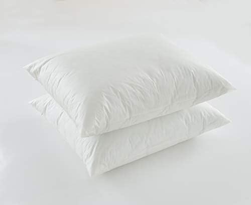 BARGOOSE Vinyl Zippered Pillow Protector Bed Bug Proof Waterproof ALLERGEN Barrier 21 X 27 Standard product image