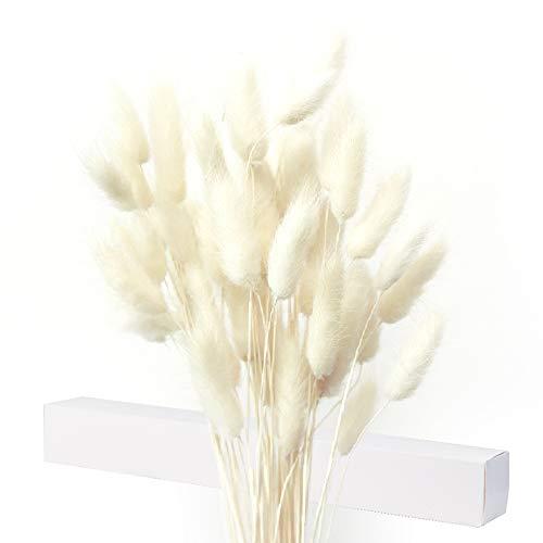 Getrocknete Pampasgras Deko, 35X Pampasgras Getrocknet, Kein Geruch Trockenblumen, Trockenblumenstrauß, Kartonverpackung, Nicht Leicht zu Zerbrechen