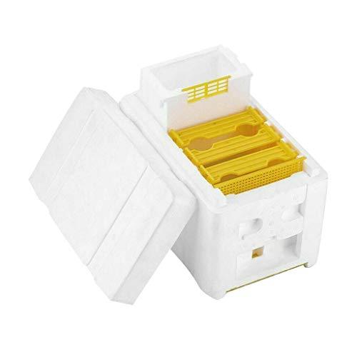 Hohe Qualität Imkerei Werkzeug Biene Züchte Die Bienenkönigin Wiederverwendbar ImkereigeräTe Einfach Bestäubung Box Professionelle Einsteiger Imker Ausstattung Bienenstock (24X17.5X15.5cm, Weiß)