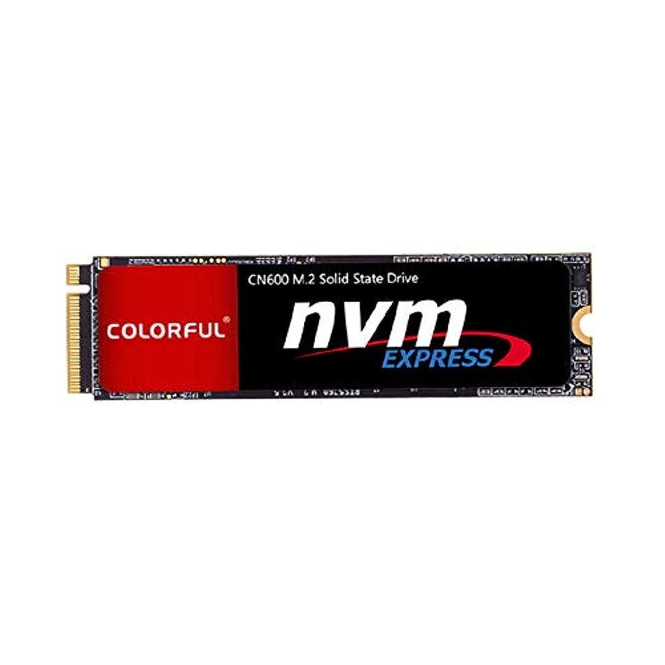 レキシコン慈善落ちたカラフルなSSD 120GB M.2 NVMe 2280ソリッドステートドライブPCノート