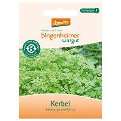 Bingenheimer Saatgut - Kerbel - Kräuter Saatgut / Samen