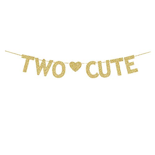 Two Cute Banner, Gold Gliter Paper Sign Decors for Baby's 2nd Birthday