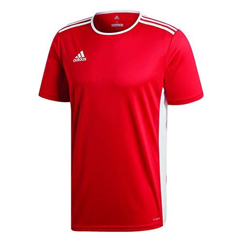adidas Herren ENTRADA 18 JSY T-Shirt, Power red/White, XS