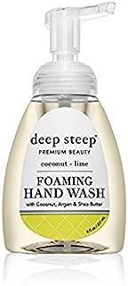 Deep Steep Foaming Hand Wash, 8 Ounce (Coconut Lime)