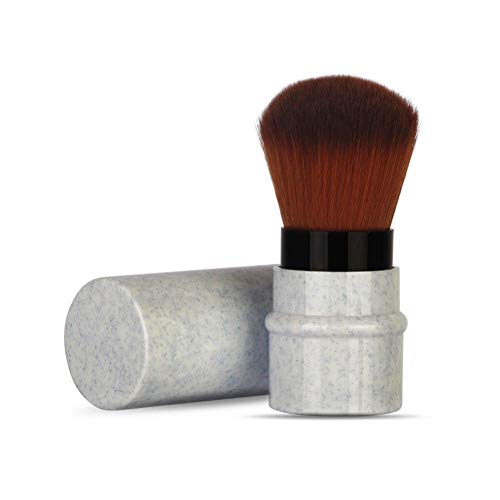 Pinceaux Maquillage de Maquillage pour Fard à Joues, Poudre, Fond de Teint, Cache-cernes Beauté Maquillage Brosse Cosmétique Professionnel(Bleu)