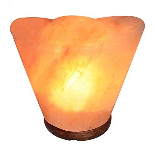Dormitorio forjado mesa de hierro de la vendimia de la lámpara Lámpara de sal Negativo luz de la noche Luz de liberación de iones de sal regulable cristal de roca tallada mano de madera + Base de noch