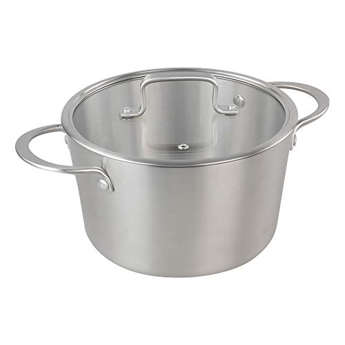 Lesbye 4-4.5 L Soup Pot with Tempered Glass Lid, Stainless Steel Stock Pot