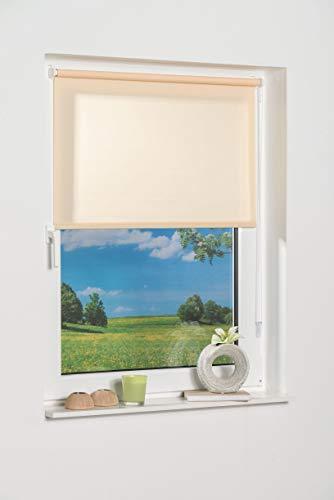 K de Home 541357–3Klemmfix–Estor de Mini, Beige Luz de día, plástico, Tela, Beige, 50 x 150