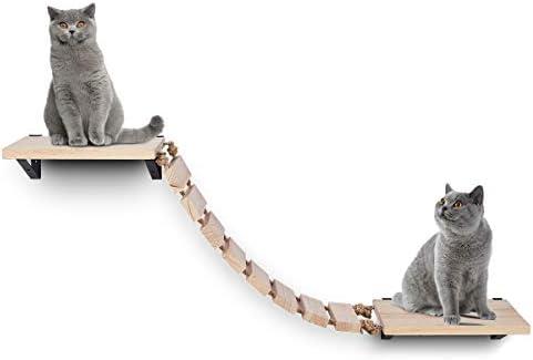 Cat rope bridge _image3