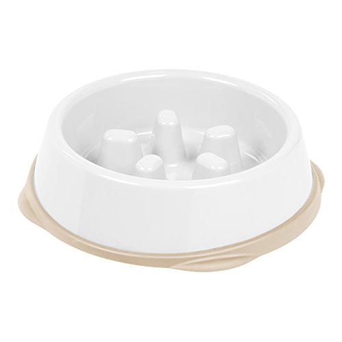 IRIS Slow Feeding Bowl for Short Snouted Pets, White/Beige