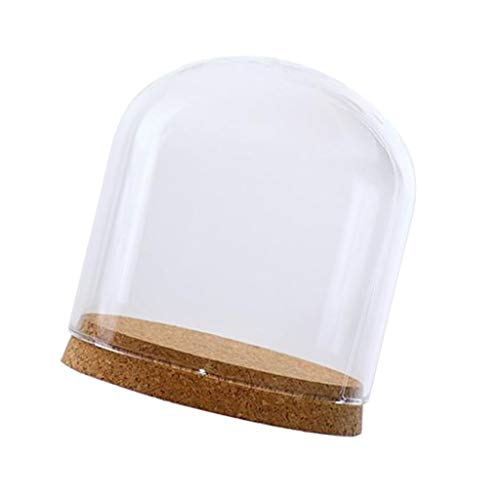 perfk Cubierta de Vidrio Transparente DIY Micro Paisaje Jardín de Hadas Terrario Contenedor Florero Botella con Corcho de Madera - S