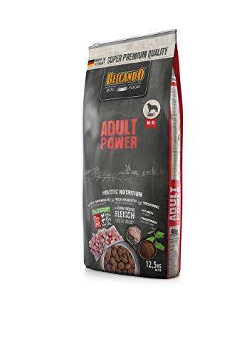 Belcando Adult Power Hundefutter | Trockenfutter für sehr aktive Hunde & Sporthunde | Alleinfuttermittel für ausgewachsene Hunde ab 1 Jahr (12,5 kg)