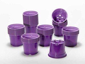 Pot de culture DUO 10.5 cm violet (x 50)