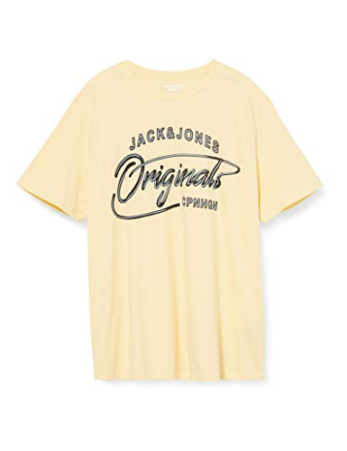 Jack & Jones Jorpex tee SS Crew Neck PS Camiseta, Flan, 4XL para Hombre