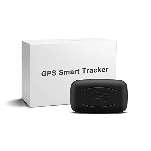LMHOME GPS Tracker für Pet, 50g Mini Leichter und Wasserfester Peilsender mit Unlimitierter Reichweite