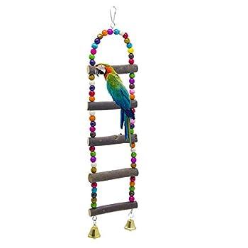 WPCASE Jouet Perruche Calopsitte Perchoir Perruche Oiseau Perroquet Échelles Debout Hamac Cage Swing Perroquets Formation Jouets pour Petits Oiseaux
