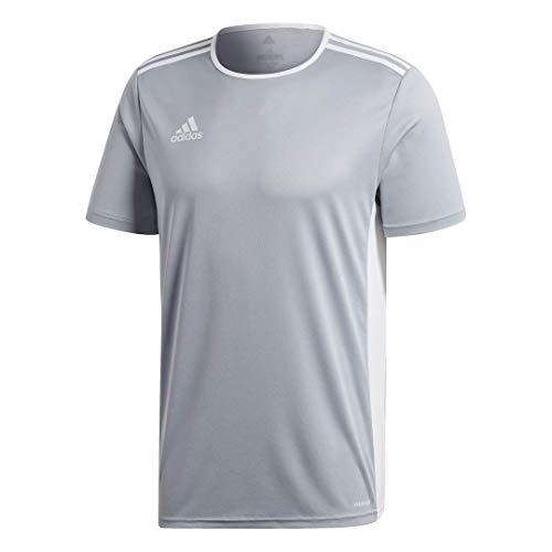 adidas Men's Standard Entrada 18 Jersey, Light Grey/White, Large