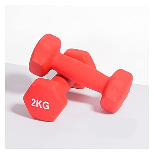 SFF Pesas Mancuernas colocan un par de Campanas de Hierro Mudo 1kg / 2kg / 3kg / 4kg / 5kg 10lb para Gimnasio hogareño de Culturismo Ejercicio Ejercicio de Ejercicio para Mujeres Aptitud Física