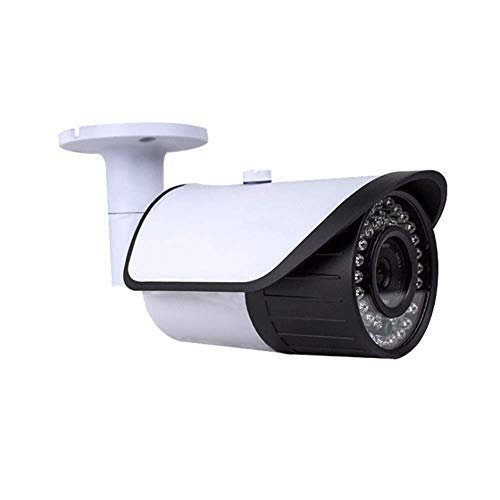 ZXL Full HD bewakingscamera Full Color Night Vision 1080P IP66 Draadloze Outdoor Beveiliging IP-camera