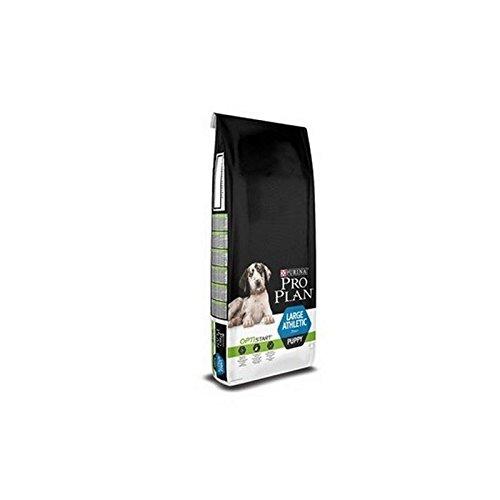Pro Plan Large Breed Athletic Puppy Poulet Nourriture pour chien (12kg) (lot de 4)