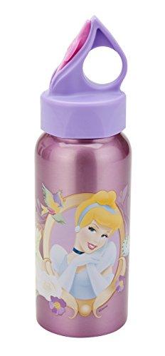 Zak! Disney Princess 16-Ounce Stainless Steel Bottle -  Zak Designs, PRXH-K880