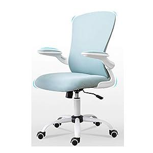 31XMEW+WTlL._SS300_ Coastal Office Chairs & Beach Office Chairs