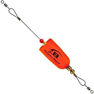 Best saltwater float rig Reviews