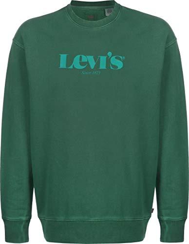 Levis män Relaxed T2 Graphic Crew tröja