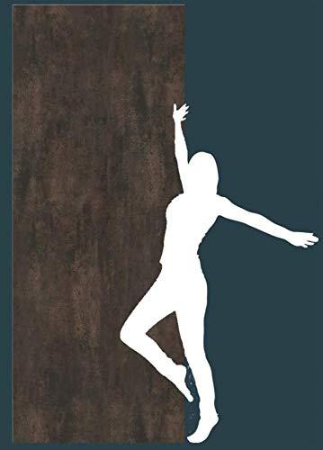 Fliesenlos und Fugenlos Dekorplatte Oxi Stahl Wandverkleidung Rückwand Fliesenersatz Fliese 2550x1000x3 mm Duschrückwand Alu Feinstein Dusche Wandbild Wandtattoo Badezimmer Rostoptik