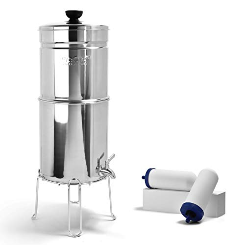 ProOne Big+ Polished Stainless Countertop Gravity Water Filter System - Removes Fluoride, Lead, Chlorine, Microplastics, and More - Includes 2 7-inch Filter Elements and Wire Stand