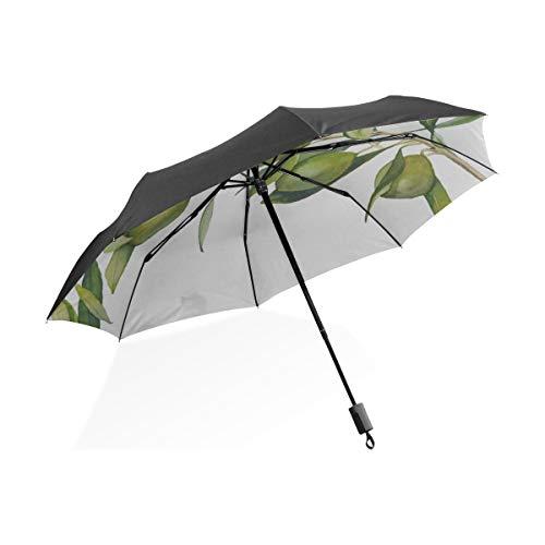 Aceitunas Verde Dibujos Animados Negro Portátil Ligero Compacto Plegable Paraguas Paraguas Protección...