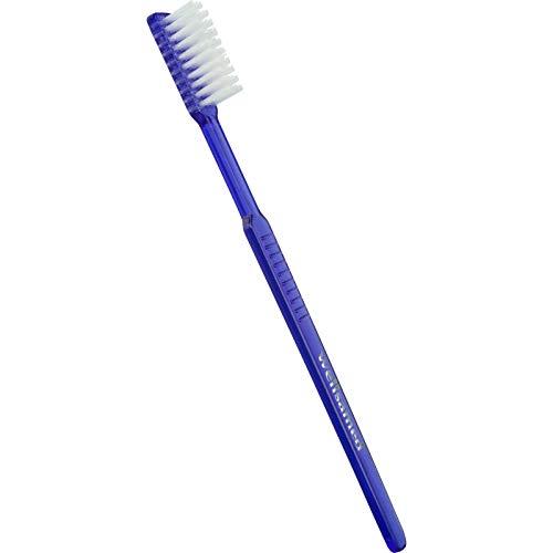 wellsamed Wellsabrush Einmalzahnbürsten mit Zahnpasta, Einwegzahnbürsten, Reisezahnbürsten, blau-transparent, 100 Stück