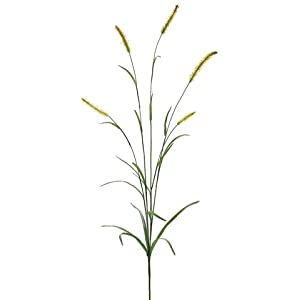 45″ Silk Foxtail Grass Stem -Green (Pack of 12)