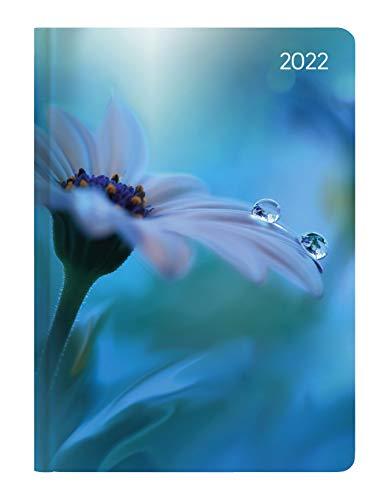 Alpha Edition - Agenda Settimanale Ladytimer 2022, 12x17 cm, Waterdrops, 192 pagine
