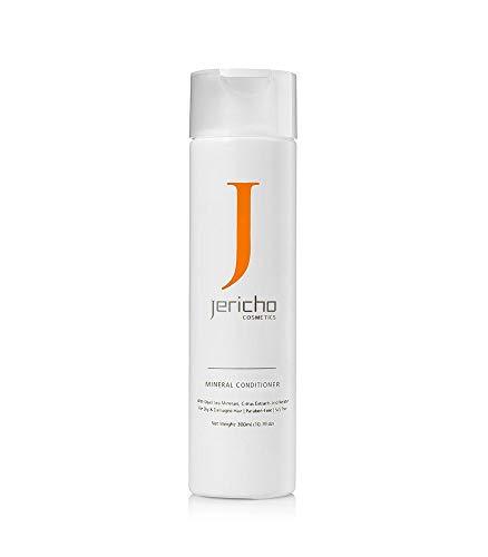 Jericó negro barro Champú (para grasa y irritados cuero cabelludo) 300ml 10,5fl. oz del Mar Muerto