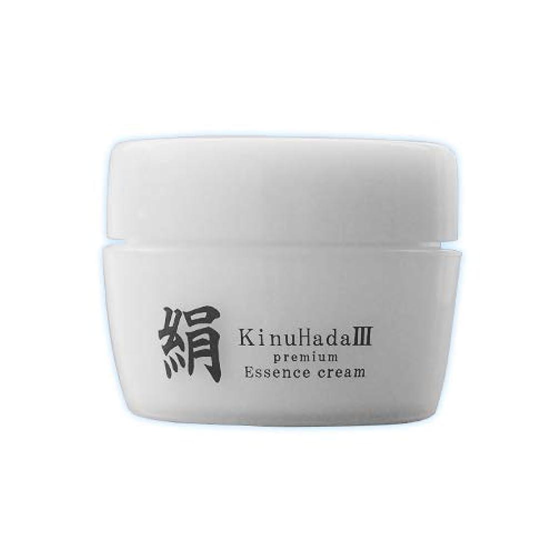 モディッシュ縮れた竜巻KinuHada 3 premium 60g オールインワン 美容液 絹