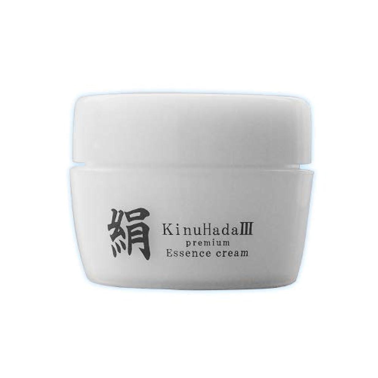 罰する能力割るKinuHada 3 premium 60g オールインワン 美容液 絹