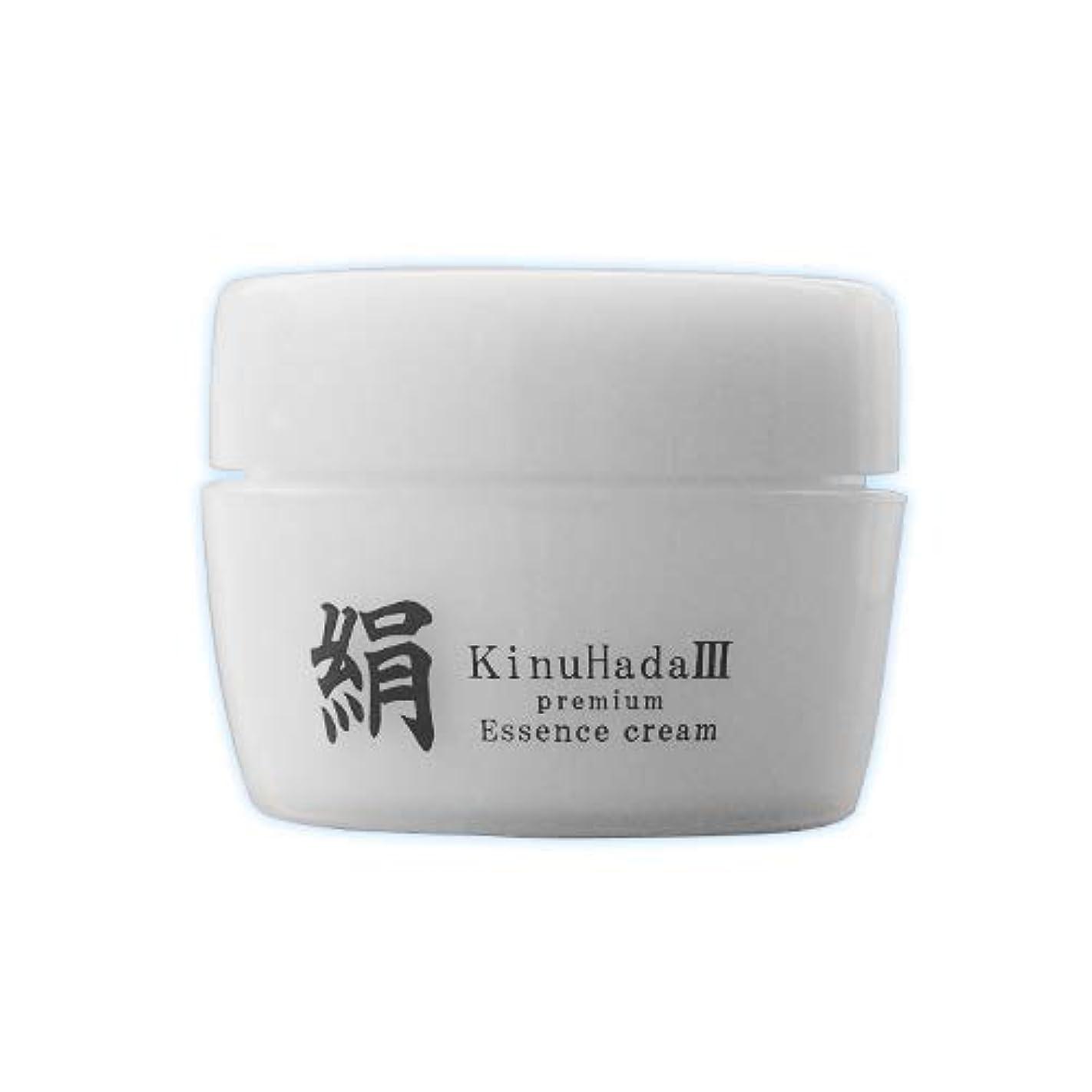 壁レンド認知KinuHada 3 premium 60g オールインワン 美容液 絹