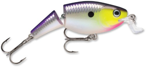 Rapala Jointed Shallow Shad Rap 07 Purpledescent