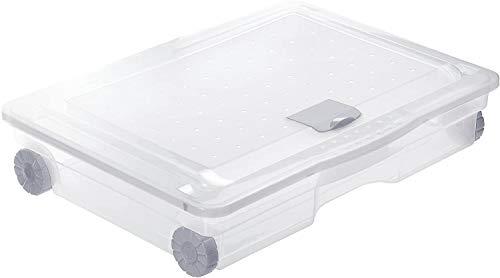 Rotho Cargo Unterbettbox 60l mit Deckel und Rollen, Kunststoff (PP) BPA-frei, transparent, 60l (80,0 x 60,0 x 18,0 cm)