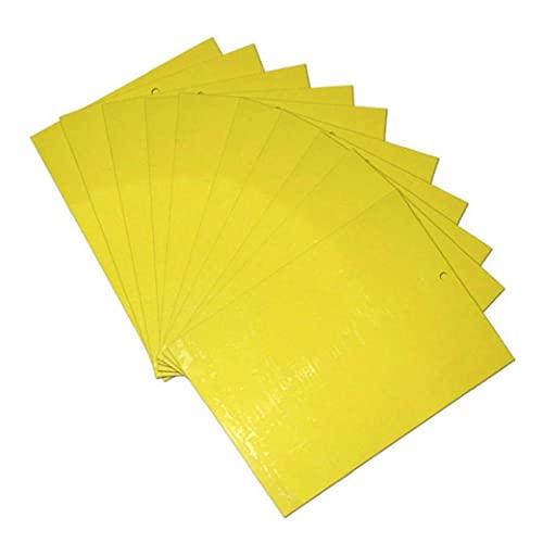 10 Piezas De Doble Mosca De La Fruta Pegajosa Amarilla Trampas Trampa Moscas Trampa para Insectos Palillo De Madera Junta Coger Pegamento De Control De Plagas Insecticida Etiqueta Interior Cocina